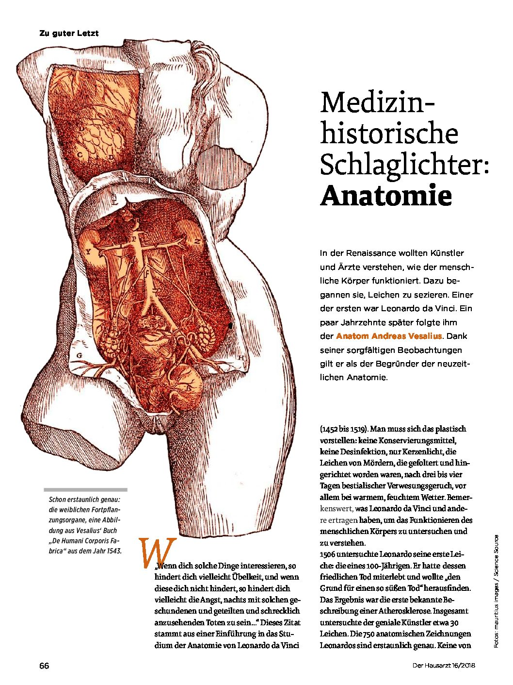 Medizinhistorische Schlaglichter: Anatomie – Der Hausarzt